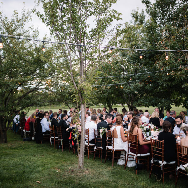 Beautiful Orchard Wedding in Niagara-on-the-Lake